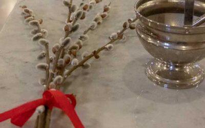 Palmsonntag, Gedanken zum Evangelium vom 28. März 2021